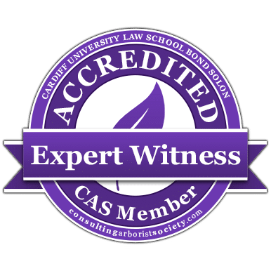 Expert-Witness-CAS-member