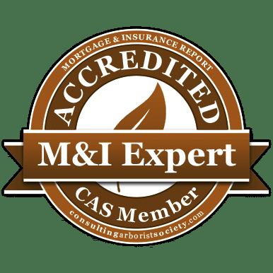 M_I-certified-CAS-member