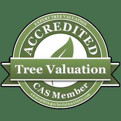 Tree-Valuation-CAS-member